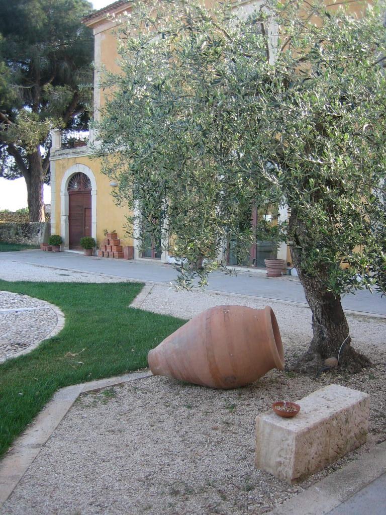 Sicilianske COS har siden starten benyttet amfora (lerkrukker) til lagring af vin