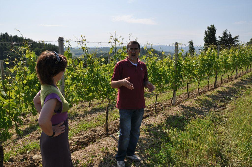 Fabrizio i vinmarken Sergentin